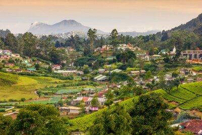 Fototapete Sri Lanka