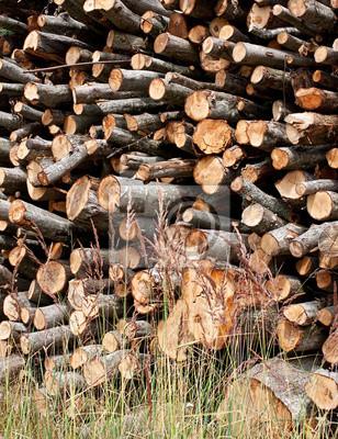 Stapel der gehackten Erle Brennholz.
