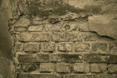 Fototapete Stary mur