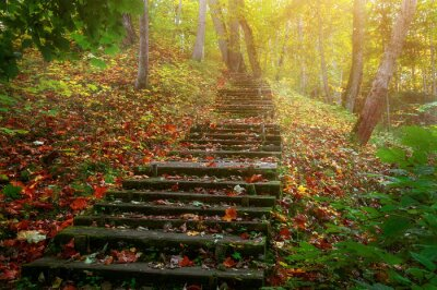 Fototapete Steigen Sie die Treppe zur Sonne
