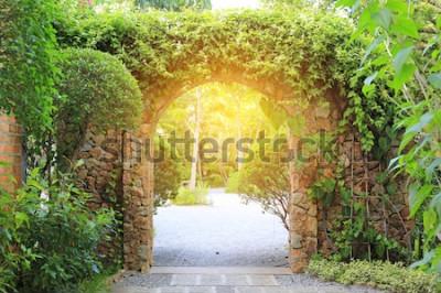 Fototapete Steinbogen-Eingangstor bedeckt mit Efeu. Torbogen zum Park mit Sonnenlicht.
