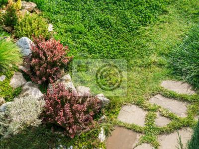 Steingarten auf dem rasenhintergrund. zusammensetzung von steinen ...