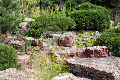 Steingarten mit koniferen und granit fototapete • fototapeten ...