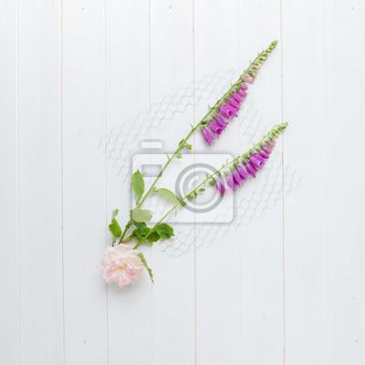 Stilleben mit zwei fingerhut, eine rose und ein huhn draht ...