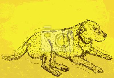 Stillstehender Hund