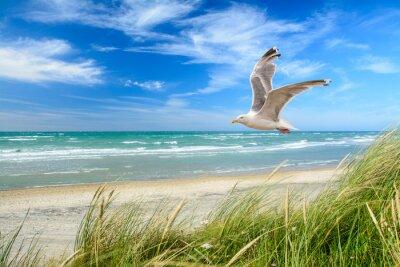 Fototapete Strand Am Meer