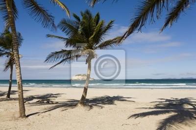 Strand Auf Der Insel Margarita Venezuela Fototapete Fototapeten