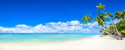 Fototapete Strand Panorama mit Meer und Palmen