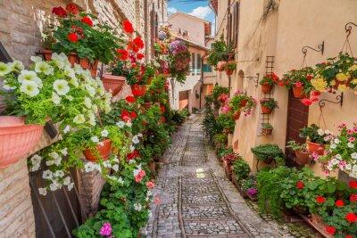 Fototapete Straße in kleinen Stadt in Italien in sonnigen Tag, Umbrien