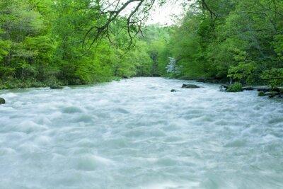Fototapete Stream in grünen Wald