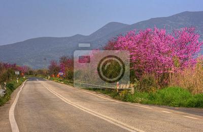 Street in Griechenland