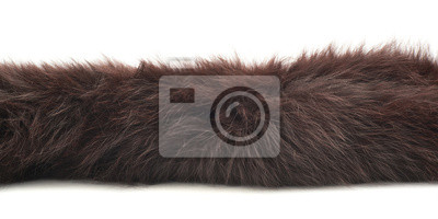 Fototapete Strip of fur isolated
