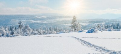 Fototapete  Stunning panorama of snowy landscape in winter in Black Forest - winter wonderland