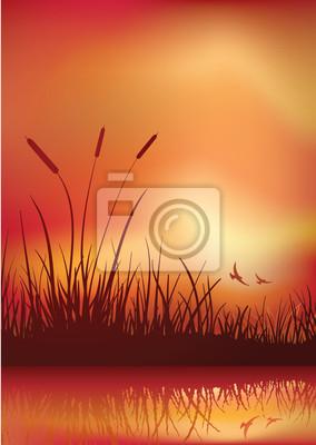 Sumpfland Sonnenuntergang.