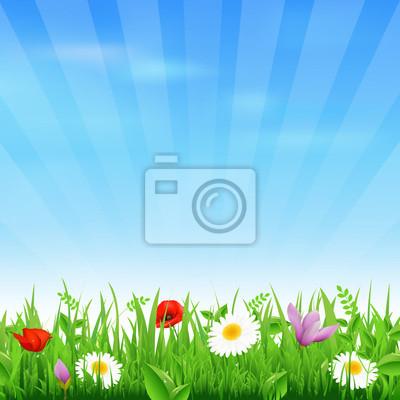 Sunburst Hintergrund mit Blumen und Gras