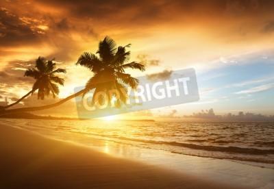 Fototapete sunset on the beach of caribbean sea