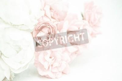 Fototapete Süße Farbe Rosen in weichen und Unschärfe Stil auf Maulbeer Papier Textur