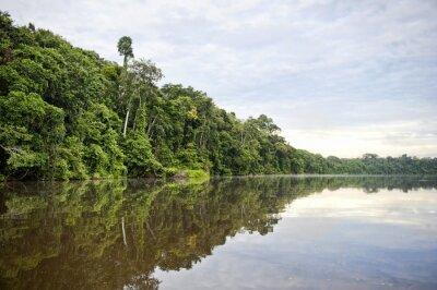 Fototapete Tambopata