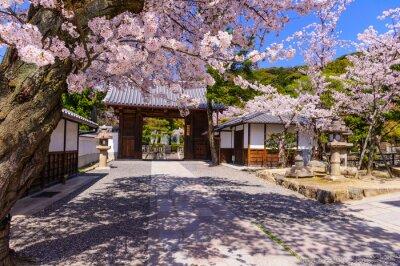 Fototapete Tempel in Kyto