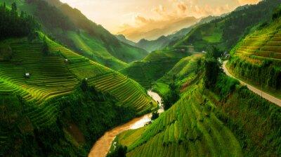 Fototapete Terrassenförmiges Reisfeld in Mu Cang Chai, Vietnam