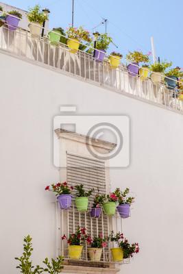 Terrazzo fiorito e vasi colorati fototapete • fototapeten Terrasse ...