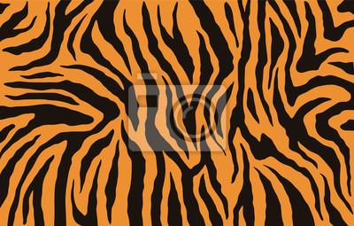 Fototapete Texture of bengal tiger fur, orange stripes pattern. Animal skin print. Safari background. Vector