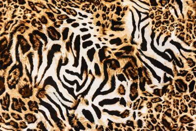 Fototapete texture of print fabric stripes leopard