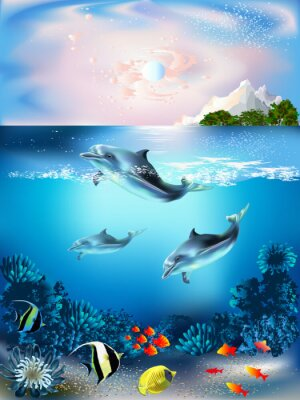 Fototapete The underwater world with dolphins and plants