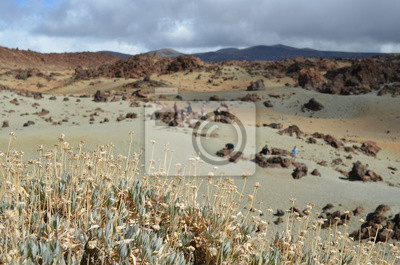 The zone under the pico del Teide
