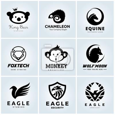 Tierlogosammlung Tierkopfsymbol Eagle Logo Bärenlogo Chamäleon