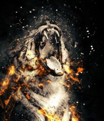 Fototapete Tiger