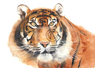Tiger Kopf Porträt Aquarell Malerei Illustration isoliert auf weißem Hintergrund