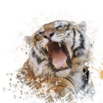 Tiger-Porträt-Aquarell