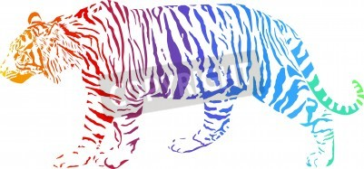 Fototapete Tiger with rainbow smokescreen camouflage