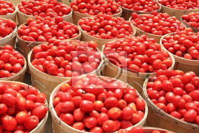 Tomate 1 Scheffel