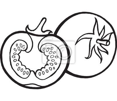 Tomaten malvorlage hand gezeichnet illustration fototapete ...