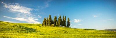 Fototapete Toskana im Frühjahr