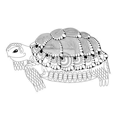 Nett Süße Malvorlagen Von Schildkröten Fotos - Beispiel ...