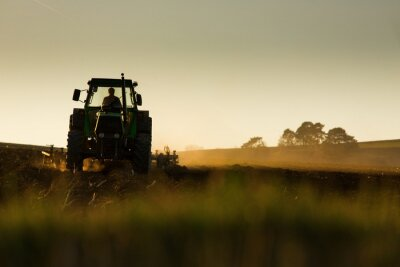 Fototapete Tractor in sunset plowing the field