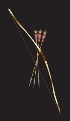Traditional Bow And Arrow