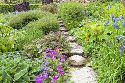 Garten von oben