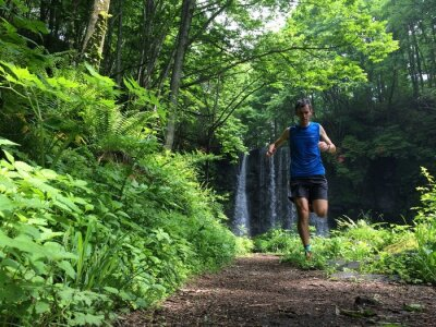 Fototapete Trail runner on woodland path