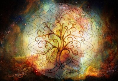 Fototapete tree of life symbol and flower of life and space background, yggdrasil.