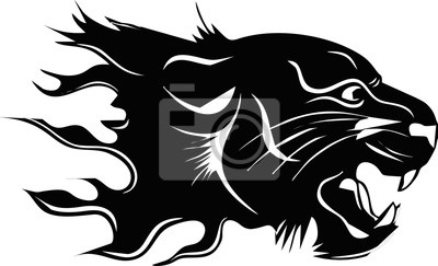 Tribal-angry black panther