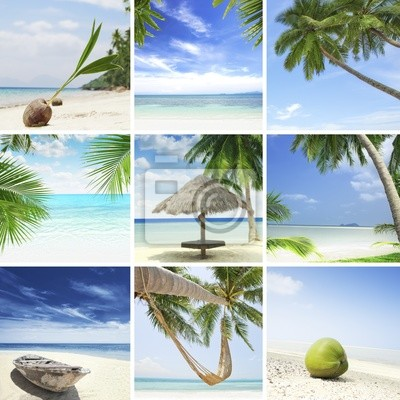 Fototapete Tropic Mix