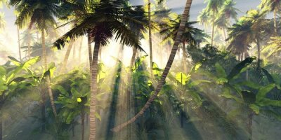 Fototapete Tropical forest in the morning sun, jungle in the fog, palm trees in the haze, 3D rendering