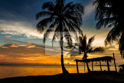 Tropical Pavillon amazing beach