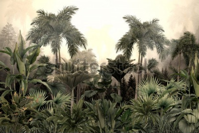 Fototapete tropical trees and leaves wallpaper design in foggy forest - 3D illustration
