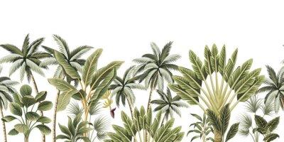 Fototapete Tropical vintage botanical palm trees, banana tree floral seamless border white background. Exotic jungle wallpaper.
