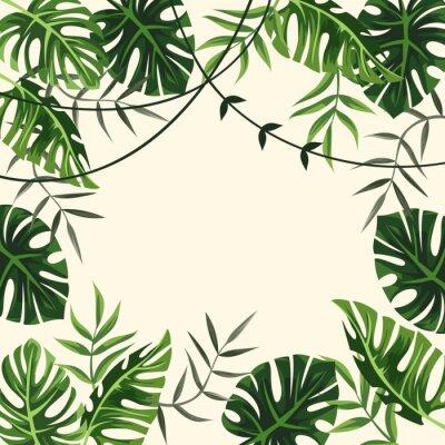 Fototapete tropischer Rahmen. Hintergrund. Laub. Vektor-Illustration